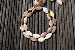 Petrified Wood 14-20mm marquise beads (ETB00527)