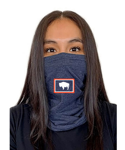 State Flag Fence Next Level  Adult Neck Gaiter Vintage Blue