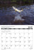 2021 Saltwater Fly Fishing Calendar