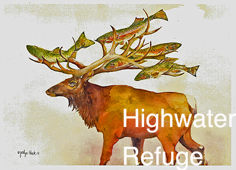 High-water Refuge - Christmas Card