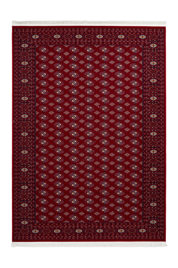 Royal 904 Traditional Red Rug with Border - Lalee Designer Rugs