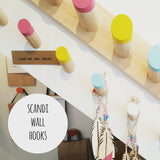 Scandi Chunky Wooden Hook: bright paint dipped detail