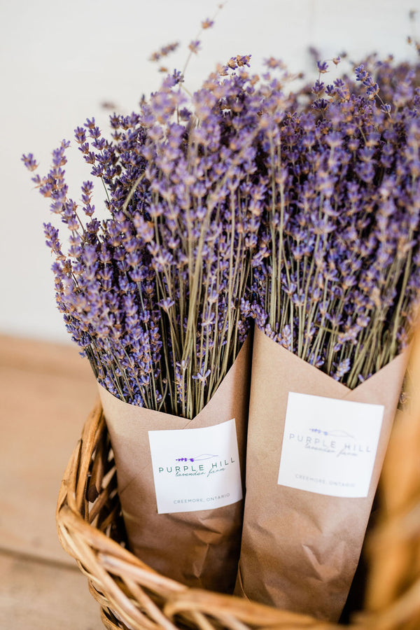 Dried Lavender Bouquet