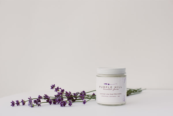 2 oz Black Lavender Goat Milk Creme