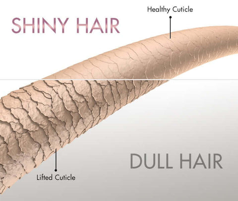 shiny hair compared to dull and dry hair