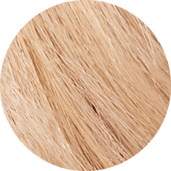 10XL Extra Light Blonde Permanent Hair Dye A light and bright cool blonde Permanent Hair Colour - Vegan Online - The Vegan Town