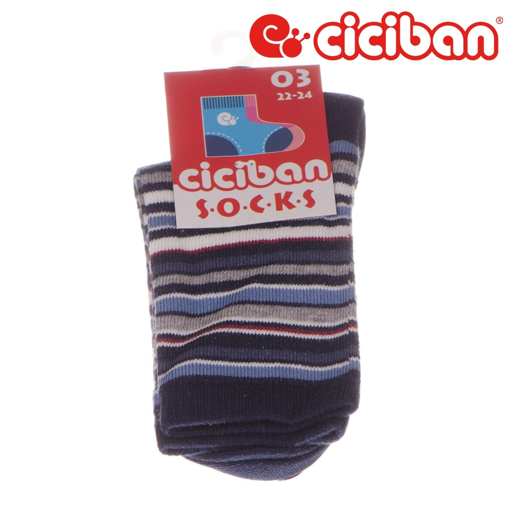 Socks - Multi Stripe Navy Extras