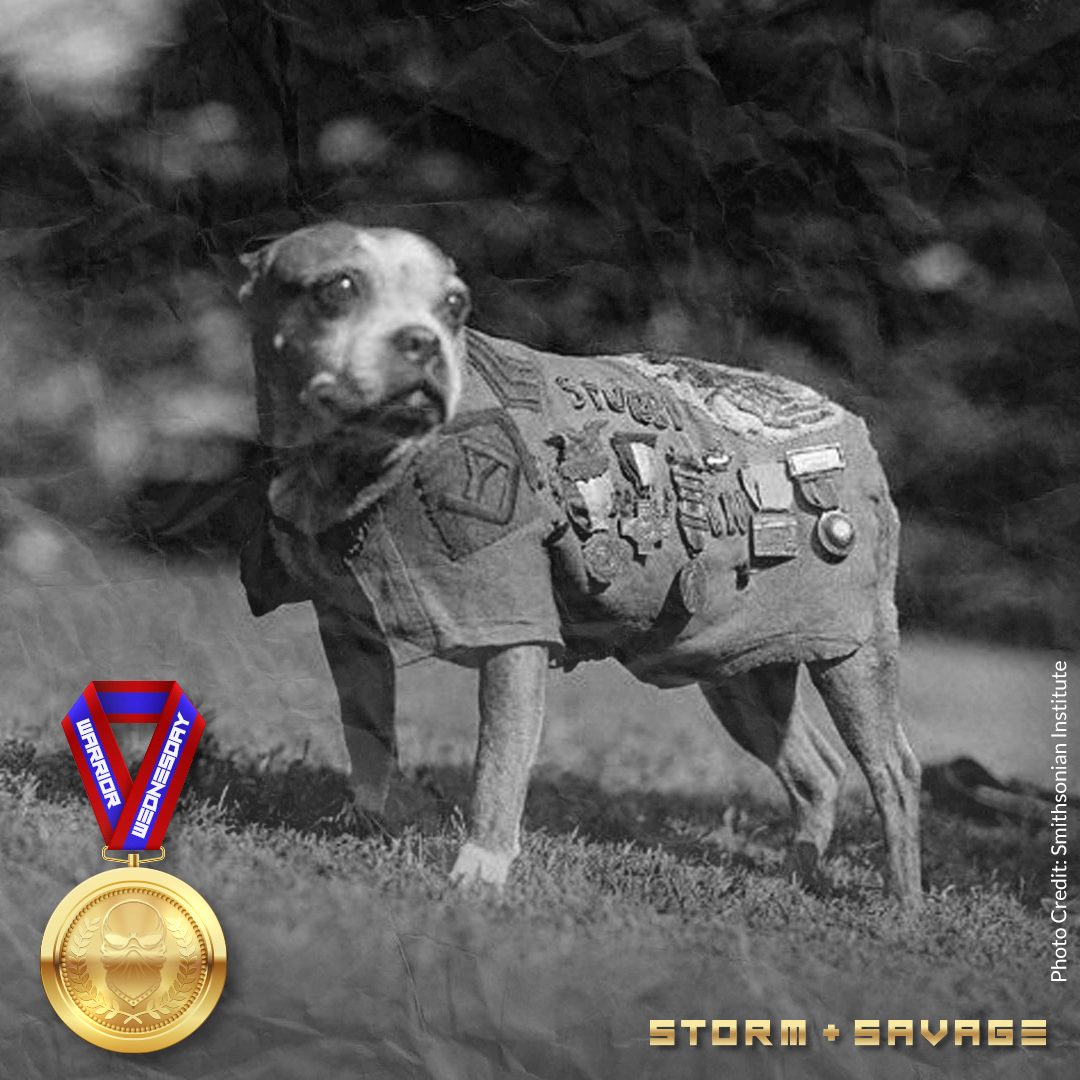 SGT. STUBBY – WORLD WAR I