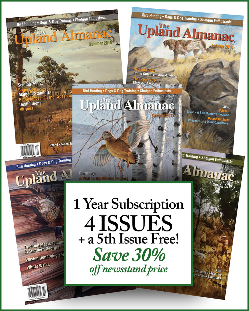 1 Year Subscription<br>+ a FREE 5th Issue  (SH917)