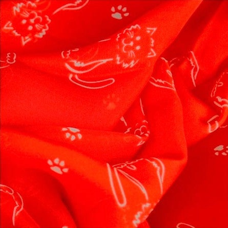 Red silk chiffon scarf with cat pattern, oblong shape: a perfect gift for cat lovers. Scarf by ANNE TOURAINE Paris™ (4)