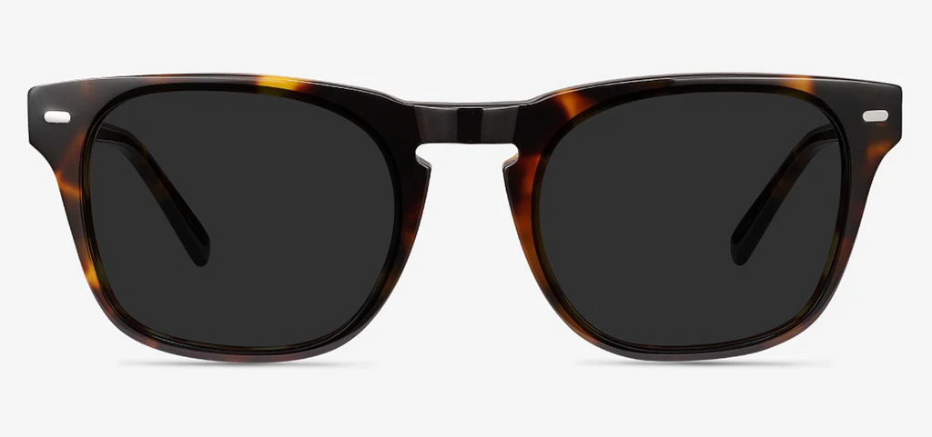 16841321f3 Tortoise Sunglasses – New York Glass