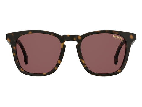 Carrera - 143 Dark Havana Sunglasses / Burgundy Polarized Lenses