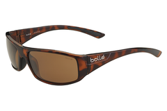Bolle -  Weaver Shiny Tortoise Sunglasses, A14 Oleo AF Polarized Lenses