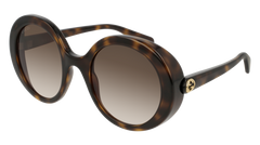 Gucci - GG0367S Havana Sunglasses / Brown Lenses