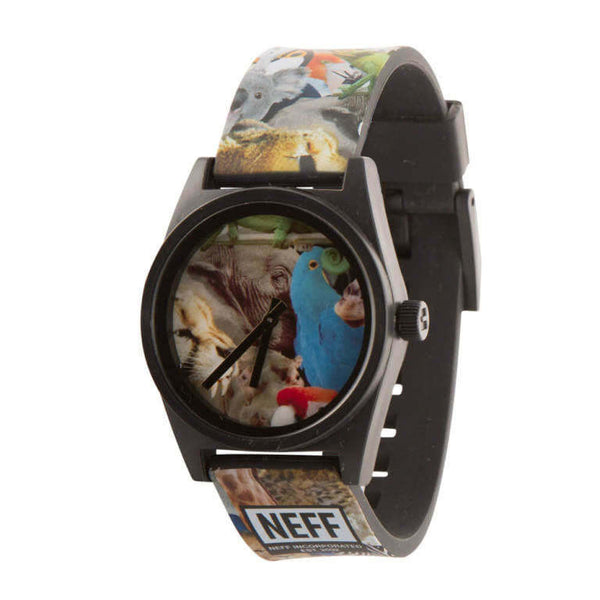 Neff - Daily Wild Wildlife Watch