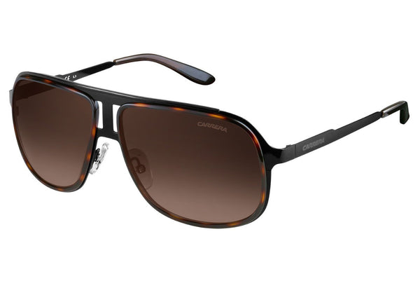 Carrera - 101/S Black Havana Sunglasses, Brown Gradient Lenses