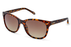 Fossil - Neely Cat Eye Dark Havana Sunglasses