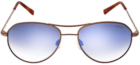 Randolph - Thaden 54mm 22K Satin Chocolate Gold Skull Temple Sunglasses / SkyForce Air Polarized Northern Lights Lenses