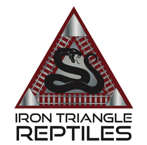 Iron Triangle Reptiles Snakes for sale