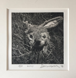 Photo-Polymer Gravure Prints