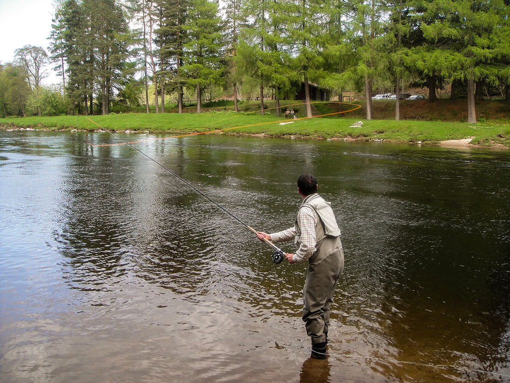Learning-the Snap t-Snap C- Spey Casts