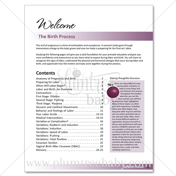 The Birth Process Booklet-Booklet-Plumtree Baby