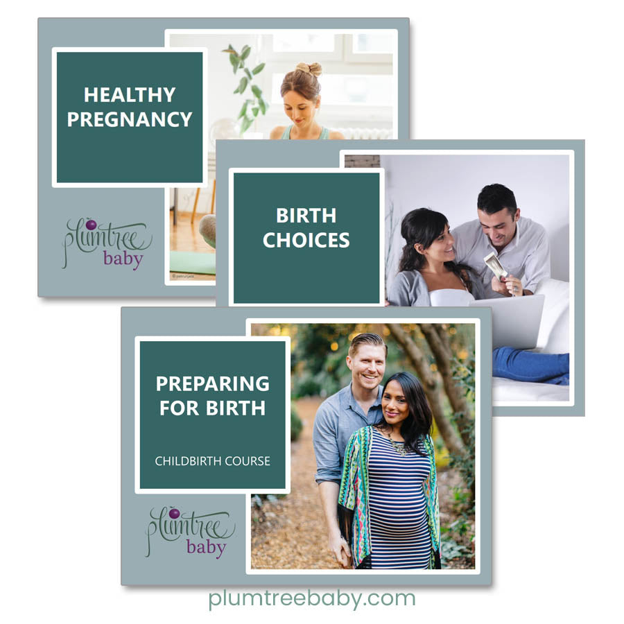 Thoughtful Childbirth PowerPoint Bundle-Teaching Aid-Plumtree Baby