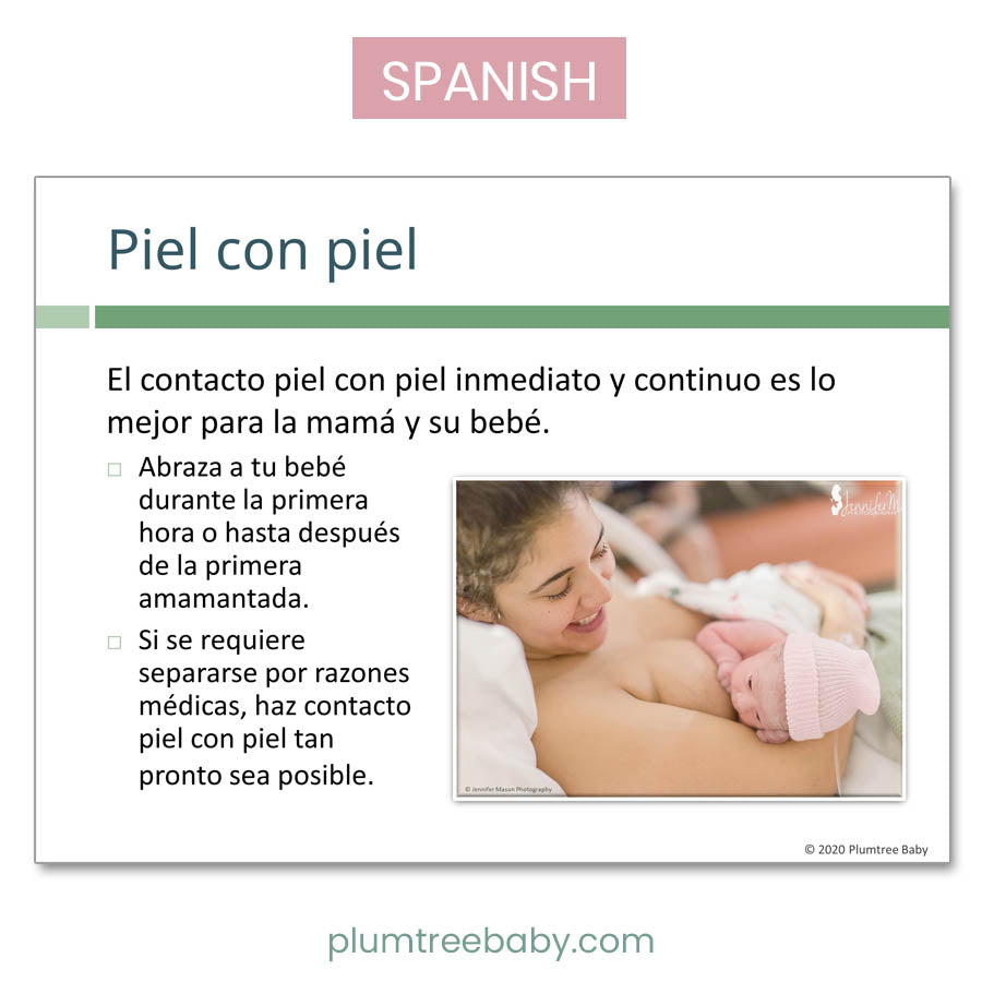 Breastfeeding PowerPoint-Teaching Aid-Plumtree Baby