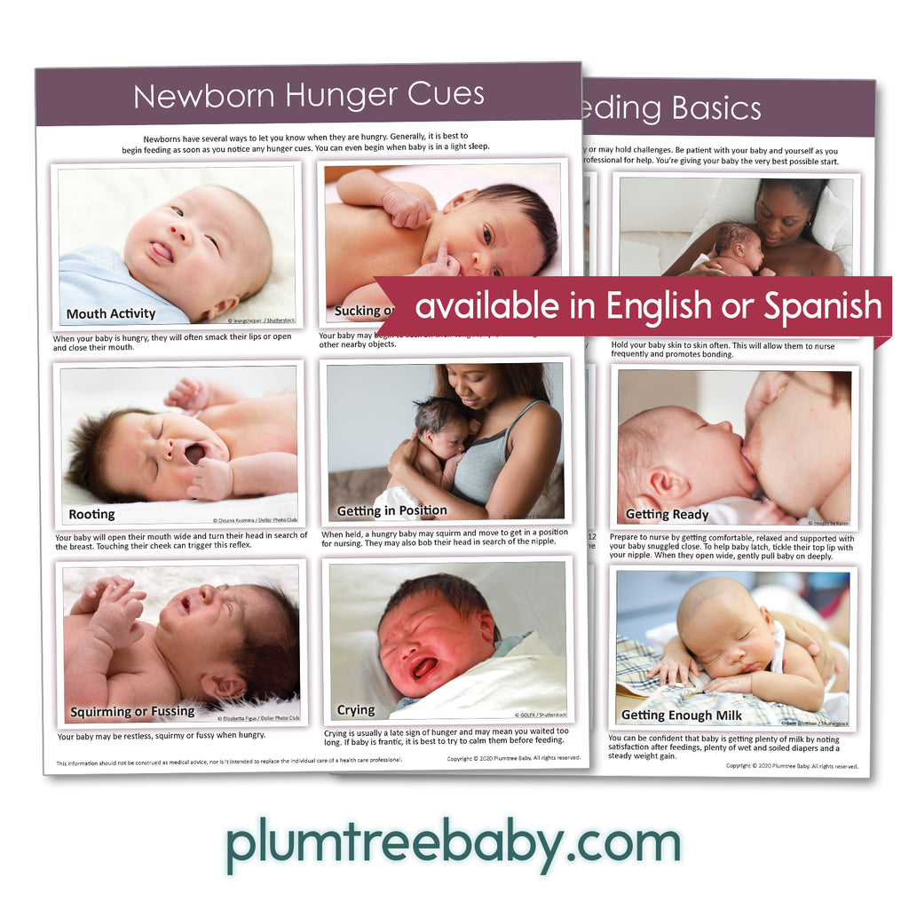 Breastfeeding Essentials Handouts - Pack of 50-Handout-Plumtree Baby