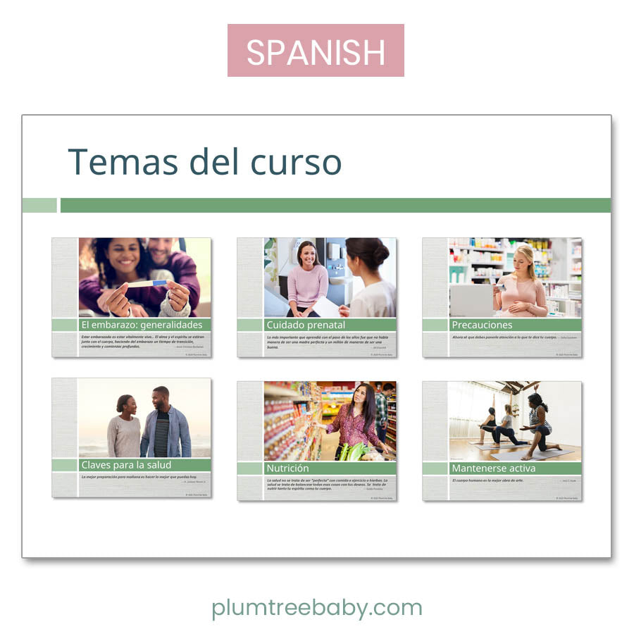 Healthy Pregnancy PowerPoint-Teaching Aid-Plumtree Baby