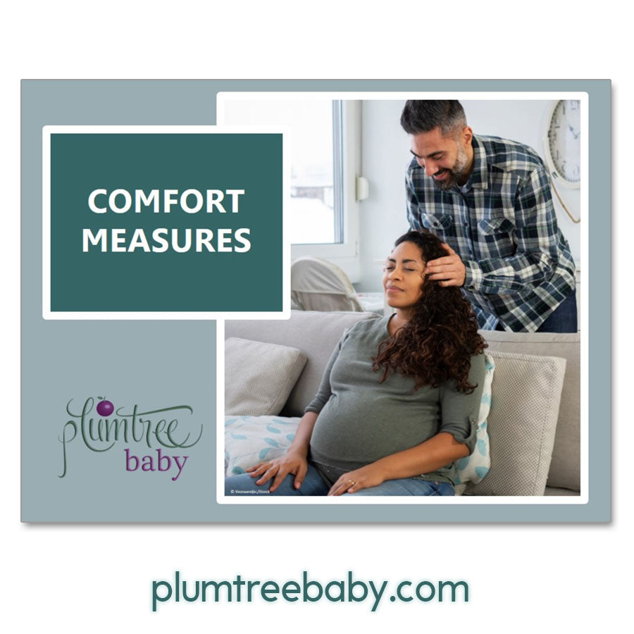 Mini Comfort Measures PowerPoint-Teaching Aid-Plumtree Baby