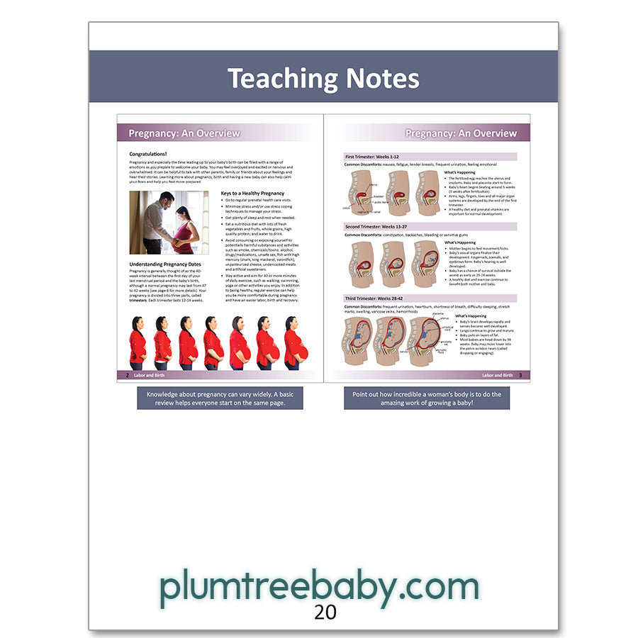 Preparing for Birth Instructor's Guide - Download-Teaching Aid-Plumtree Baby