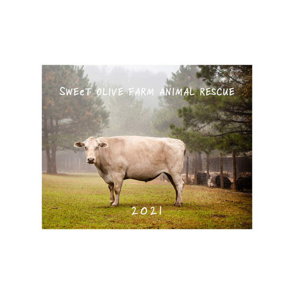 2021 Sweet Olive Farm Animal Rescue Calendar