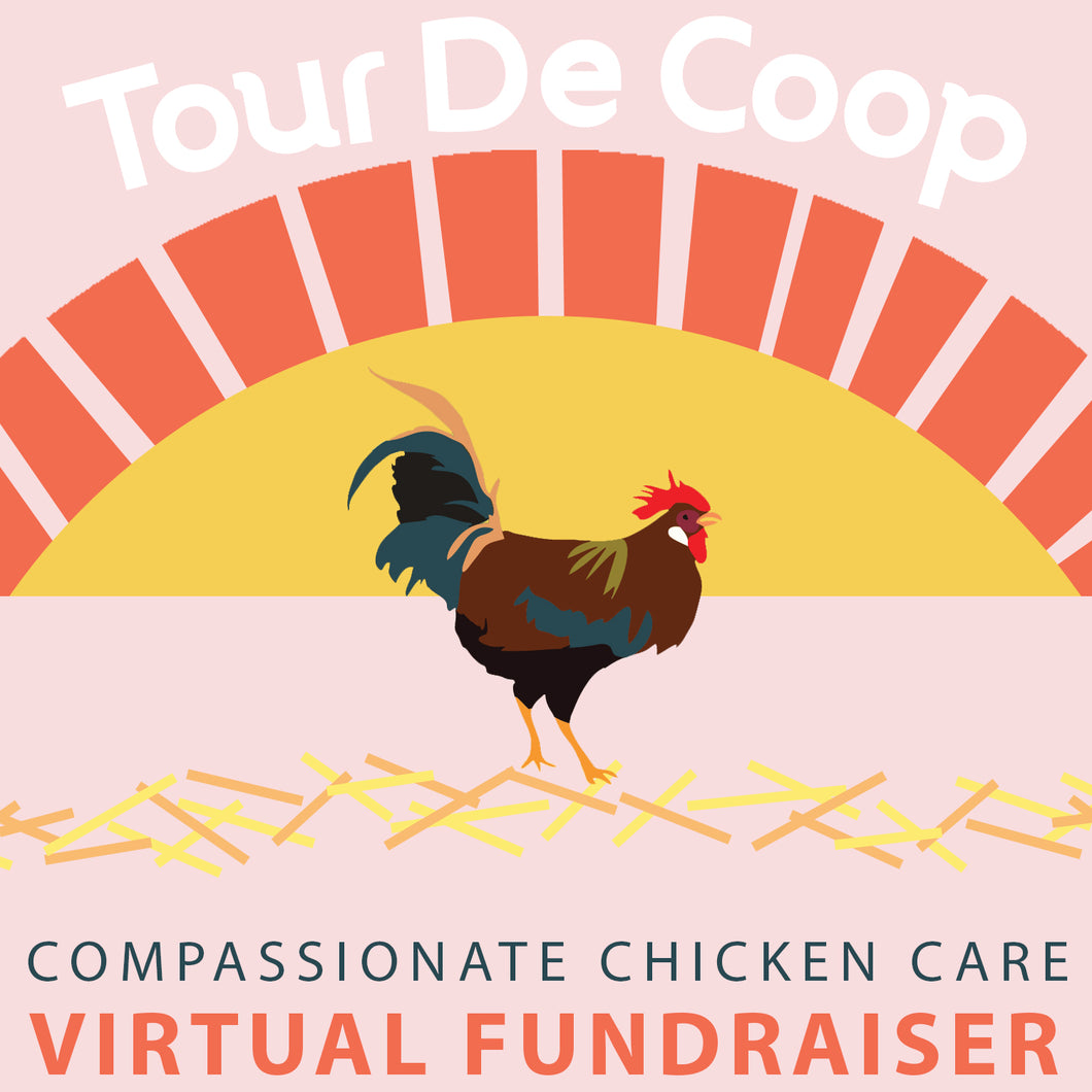 TOUR DE COOP  ::  choose your ticket level