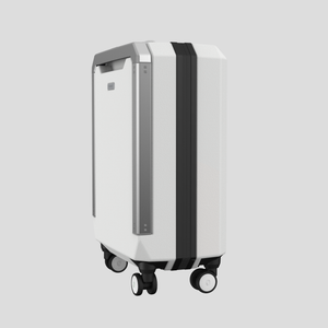 PHOENX TELA 40 CABIN LUGGAGE | Peak White