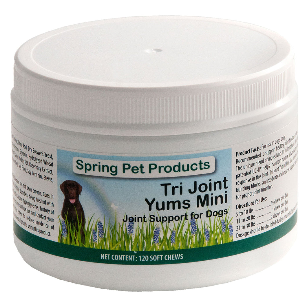 Spring Pet Tri Joint Support YUMS with Antioxidants, Glucosamine, Creatine, UC-II, Omega Fatty Acids EPA and DHA and Boswellia Helps Reduce Inflammation for Small Dogs ~ Mini 120 Count Made in USA