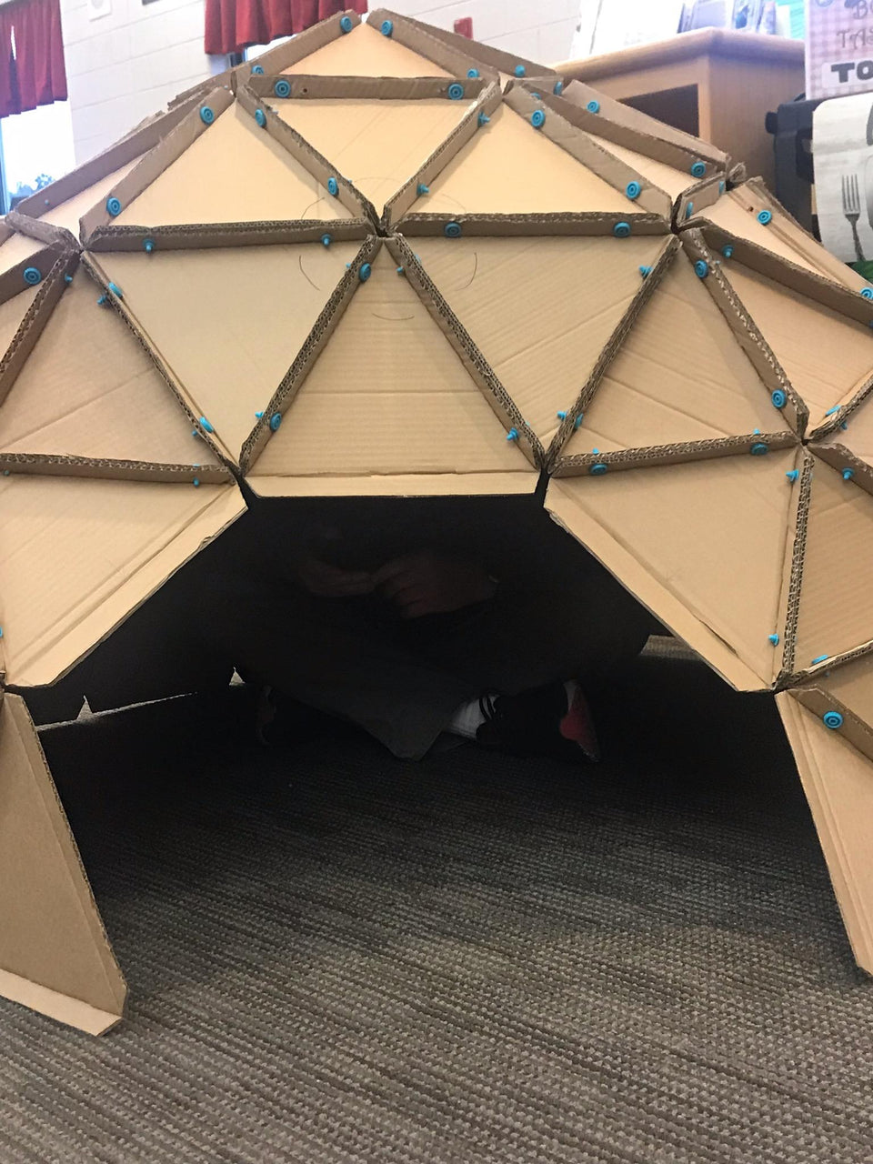 Library Geo Dome