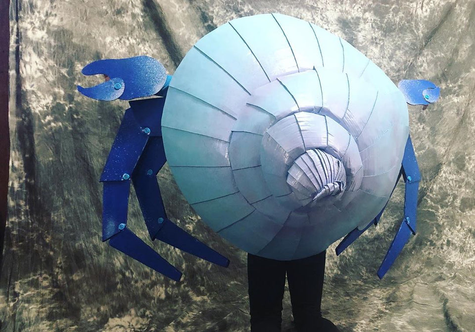 Hermit Crab Costume