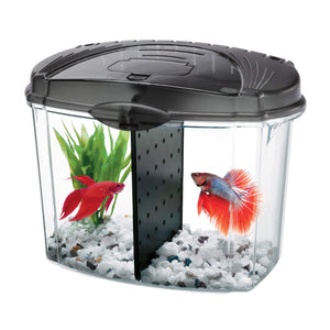 Betta Bowl Kits