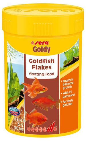 Goldy - Corals Fish and Beyond