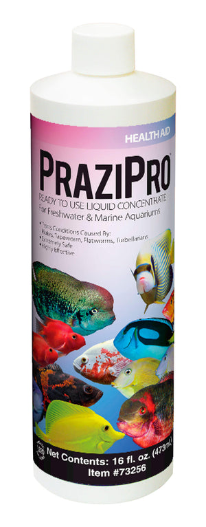 PraziPro® - Corals Fish and Beyond