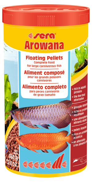 Arowana 1000ml - Corals Fish and Beyond