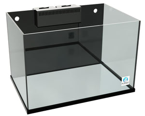 Planet Rimless Aquarium - Corals Fish and Beyond