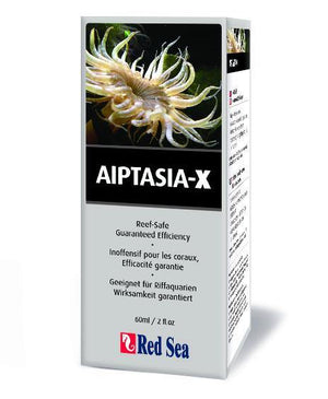 Aiptasia X Kit w/ Applicator - Corals Fish and Beyond