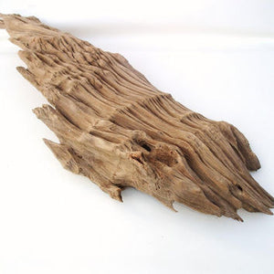 Cypress Drift Wood per Lb - Corals Fish and Beyond