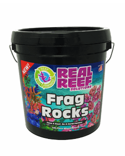 Frag Rock Bucket (200ct) - Corals Fish and Beyond