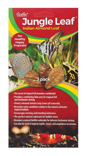 Jungle Leaf 3pk - Corals Fish and Beyond