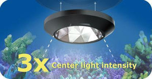 Kessil A360X Narrow Reflector - Corals Fish and Beyond