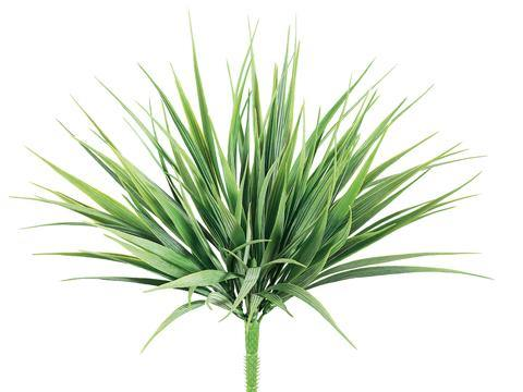 "Tideline 12"" Vanilla Grass Bush Green/Frosted"