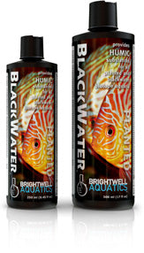 BlackWater - Corals Fish and Beyond